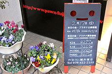 DSC_2115.jpg